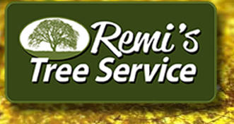 Appleton Tree Services - Remi's Tree Service