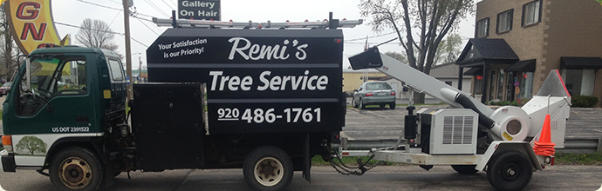 Tree Trimming Service Fox Valley Wi